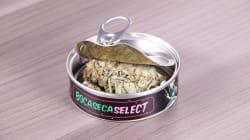 Marihuana en latas de atún: la 'línea gourmet' de los cárteles en