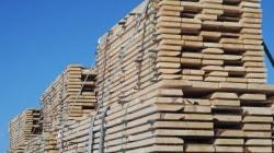 Ottawa exerce ses recours pour défendre Bombardier et le bois d'oeuvre