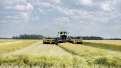 ▶China's Tiff With Canadian Canola,