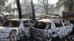 Bulandshahr Violence: Four Arrested; Key Accused Allegedly Bajrang Dal