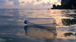 Tutte le cose che facciamo ogni giorno per distruggere i nostri oceani (e come
