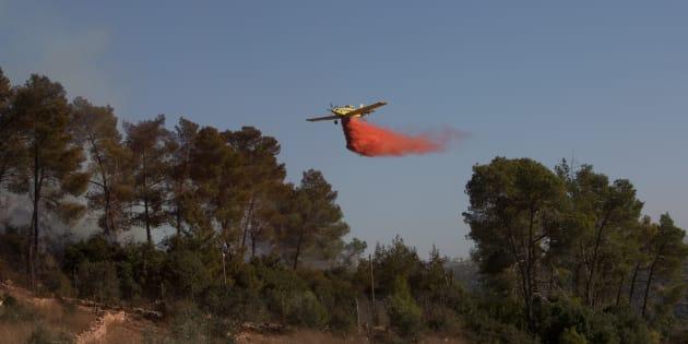 Fin d'alerte en Israël après une série d'incendies ravageurs