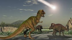 Les empreintes d'un nouveau dinosaure géant découvertes en