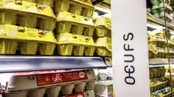 Des produits pouvant être à base d'œufs contaminés retirés des supermarchés