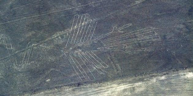 Imagen de un cóndor, en el parque de las líneas de Nasca, en Perú.
