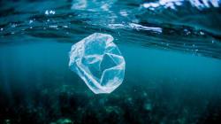 Cobrar por las bolsas en los comercios ha reducido la contaminación del