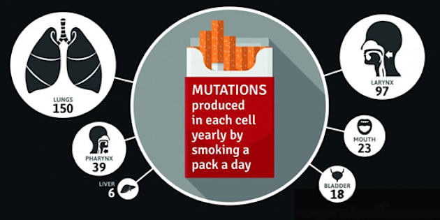 Cigarettes equal mutations in your cells.