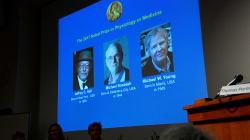 Trois chercheurs américains sont récipiendaires du prix Nobel de