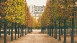 BLOGUE L'automne à