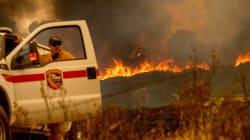Incendio forestal en California es el segundo más grande de la historia del