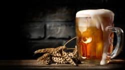 BLOG - Ce que vous ignoriez sur le gruit, remplacé par le houblon dans nos bières