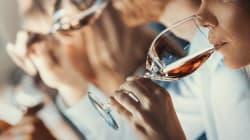 Aprende a elegir la mejor copa para tu