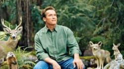 Cette photo de Schwarzenegger vaut le