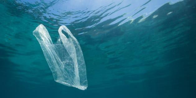 Far pagare i sacchetti di plastica... funziona!