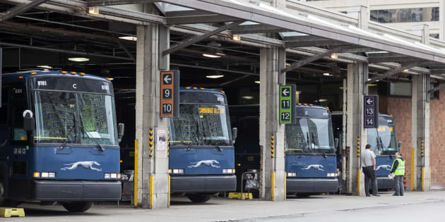 Greyhound buses at the Toronto Coach Terminal in Toronto, Ont. Package delivery firms say they are prepared to fill the gap when Greyhound Canada closes most of its Western Canada operations this fall.