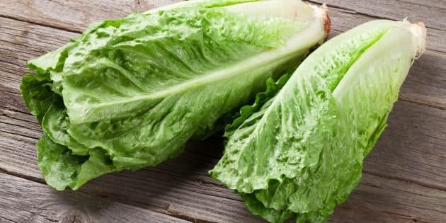 Fresh Romano salad on wooden table