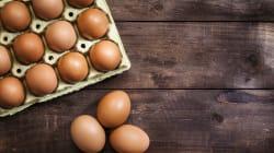En 2022, tous les œufs que vous mangerez devront venir de poules élevées en plein
