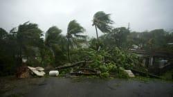 L'ouragan Maria épargne la Martinique mais pas la Dominique, la Guadeloupe retient son