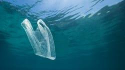Contro i rifiuti di plastica in mare, un progetto pilota sul