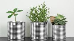 9 ideias de como reutilizar latinhas e transformá-las em