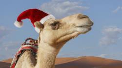 7 traditions de Noël parmi les plus