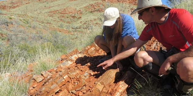 Tara Djokic and Professor Martin Van Kranendonk found the fossils in the Dresser Formation in the Pilbara in Western Australia.