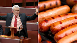 Malcolm Roberts Raises 'Conceptual Penises' To Challenge Climate