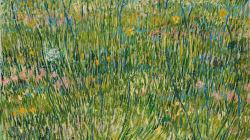 Australia's Largest Van Gogh Exhibition Is Kicking Off In