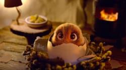 Questo spot racconta la storia del coniglietto di Pasqua ed è un inno contro il
