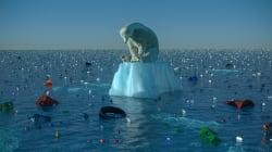 BLOG - Si une autre espèce causait autant de dégâts que l'humanité, on ferait tout pour s'en débarrasser au plus