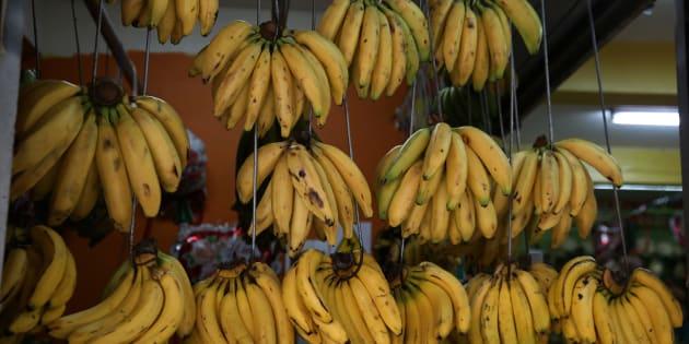 A cause de l'ouragan Maria, les bananes de Guadeloupe et de Martinique vont disparaître de nos étals pendant plusieurs mois