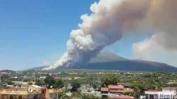 Fumo alle pendici del Vesuvio: incendio minaccia centinaia di