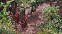 Las tribus indígenas aisladas son, además de vulnerables, fundamentales para el