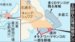 辺野古の土砂投入、「サンゴは移植」と安倍晋三首相がNHKで発言。沖縄県は「不正確だ」と反発