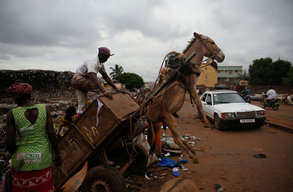 In Mali's capital, donkeys are on front line of fight against waste