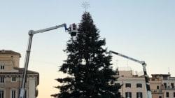 Altro che Spelacchio e Spezzacchio: guardate che spettacolo l'albero di Roma (anche senza