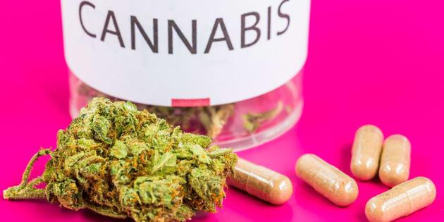 """Le cannabis médical """"pourrait"""" arriver en France pourrait arriver en France."""