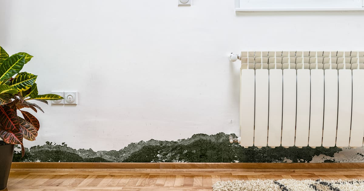 How To Get Rid Of Mould In Your Home