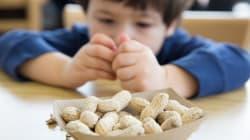 Un patch contre l'allergie à l'arachide testé avec succès, des traitements contre le lait et l'oeuf devraient