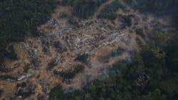 Michel Temer extingue reserva ambiental e libera mineração na