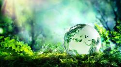 La green economy sia architrave del programma