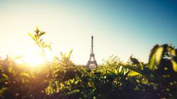 BLOG - 5 solutions pour que l'Europe soit une puissance verte et que la Terre ne devienne pas