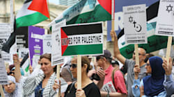 Pro-Palestinian Groups Are The Real Victims Of Campus