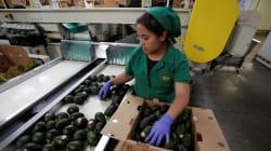 México es el único país emergente del G20 donde los salarios han ido a la baja en 10
