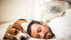 11 datos que debes saber para empezar a dormir