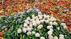 Les Américains gaspillent 150.000 tonnes de nourriture par