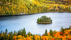 5 Spots Super Close To Montreal To Check Out Fall Leaves This