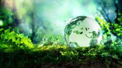 Basta promesse roboanti, le sfide ecologiste tornino al centro della politica per il futuro