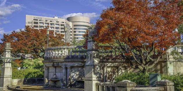 Universidad de Nagoya, Japón.