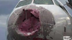 La grandinata distrugge il muso dell'aereo, il pilota eroe porta in salvo 127